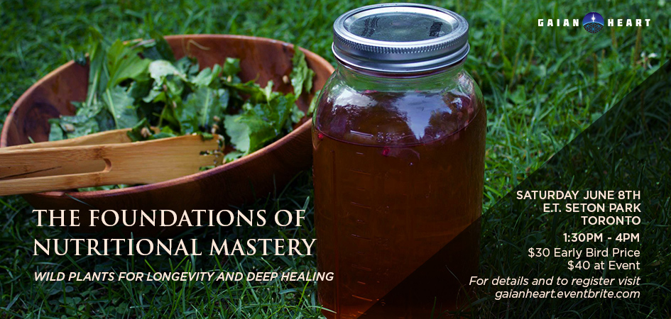 The Foundations of Nutritional Mastery: Wild Plants for Longevity and Deep Healing
